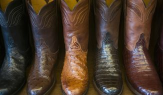 Cowboy boots of various exotic skins line the shelves at the Lucchese Boot Maker shop, Wednesday Sept. 20, 2017, in San Antonio, Texas. The Lucchese store sells off the shelf hand-crafted boots made in Texas. (AP Photo/Marco Garcia)