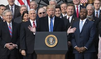 President Donald Trump joined by Senate Majority Leader Mitch McConnell of Ky., Vice President Mike Pence, Speaker of the House Paul Ryan, R-Wis., Sen. Tim Scott, R-S.C., front right, and other members of congress, speaks during an event on the South Lawn of the White House in Washington, Wednesday, Dec. 20, 2017, to acknowledge the final passage of tax overhaul legislation by Congress. (AP Photo/Carolyn Kaster)