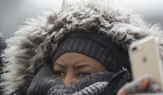 A Chicago Bears fan watches in the snow against the Cleveland Browns during an NFL football game in Chicago, Sunday, Dec. 24, 2017. (AP Photo/Nam Y. Huh)