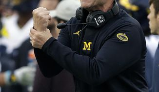 Michigan head coach Jim Harbaugh looks for a holding during the second half of the Outback Bowl NCAA college football game against South Carolina Monday, Jan. 1, 2018, in Tampa, Fla. South Carolina won the game 26-19. (AP Photo/Chris O'Meara)