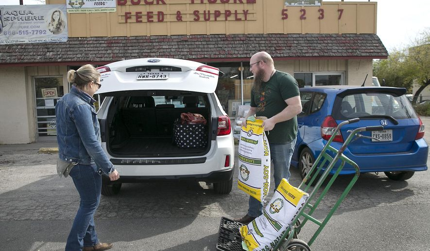In this Dec. 15, 2017, photo John Bushong hauls feed out to the car for customer Amy Prince during regular business hours at the Buck Moore Feed and Supply store in Austin, Texas. (Ralph Barrera/Austin American-Statesman via AP)