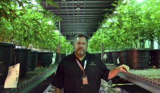 Andy Williams, founder and CEO of Medicine Man Denver poses for a photo in Denver on Thursday, Jan. 4, 2018. Colorado's top federal prosecutor said his office won't alter its approach to enforcing marijuana crimes after U.S. Attorney General Jeff Sessions withdrew a policy Thursday that allowed pot markets to emerge in states that legalized the drug. Colorado was the first state in the nation to sell recreational pot legally after voters in 2012 approved it. The state has also has a longstanding medical marijuana industry and the Colorado pot market tops $1 billion. (AP Photo/P. Solomon Banda)