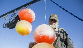 In this Jan. 4, 2018 photo, Russ Opp looks at the gum drop balls hanging from his swing set that he made by putting colored water into balloons and freezing them over the past few sub zero days in Gillette, Wy. (Kelly Wenzel/Gillette News Record via AP)