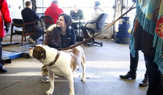 In this Feb. 2, 2017 photo, Dominique La Salvia plays with the company dog, Benny at Brahler Tire and Auto Center during a fund- raiser for for her in Springfield, Ill. Ten months ago, La  Salvia's story of being a senior at Lanphier High School who was living on her own and happened rank No. 1 in her class academically, became known during an interview with radio host Sam Madonia, and the fund-raiser was organized on her behalf. If not for the generosity of people who contributed, La Salvia says she isn't sure how she could have survived her first semester at the University of Illinois at Urbana-Champaign. (Rich Saal/The State Journal-Register via AP)