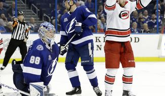 Carolina Hurricanes center Elias Lindholm, right, of Sweden, celebrates his goal against Tampa Bay Lightning goaltender Andrei Vasilevskiy, left, and Anton Stralman, center, during the third period of an NHL hockey game Tuesday, Jan. 9, 2018, in Tampa, Fla. The Lightning won 5-4. (AP Photo/Chris O'Meara)
