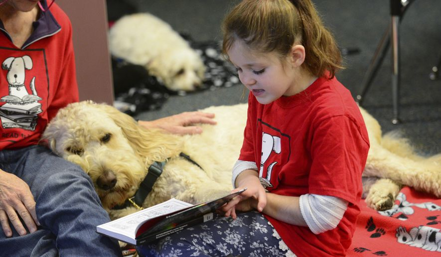 "Liliahna Jevne, a second-grade student at Chimacum Creek Primary School, reads to Jake during the Read to Rover program on Friday, Jan. 5, 2018 in Chimacum, Wash. Every Friday, second-grade students get a chance to read aloud to furry companions in the school's library as part of the ""Read to Rover"" program.  (Jesse Major/The Peninsula Daily News via AP)"