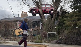 In this Wednesday, Jan. 10, 2018 photo, a passerby walks past Janis Zettel's VW Beetle, named Lucy, sitting in the poplar tree in the front of her home in Clearfield, Utah. Janis is fighting back after the city ordered her to take it down. (Scott Sommerdorf/The Salt Lake Tribune via AP)