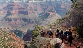 """FILE - In this March 27, 1996, file photo, a mule train winds its way down the Bright Angel trail at Grand Canyon National Park, Ariz. Arizona officials on Friday, Jan. 19, 2018, guaranteed that the Grand Canyon National Park will remain in full operation if Congress fails to pass a budget and a government shutdown ensues. Arizona Republican Gov. Doug Ducey said the state's top tourist attraction """"will not close on our watch, period.""""   (AP Photo/Jeff Robbins, File)"""