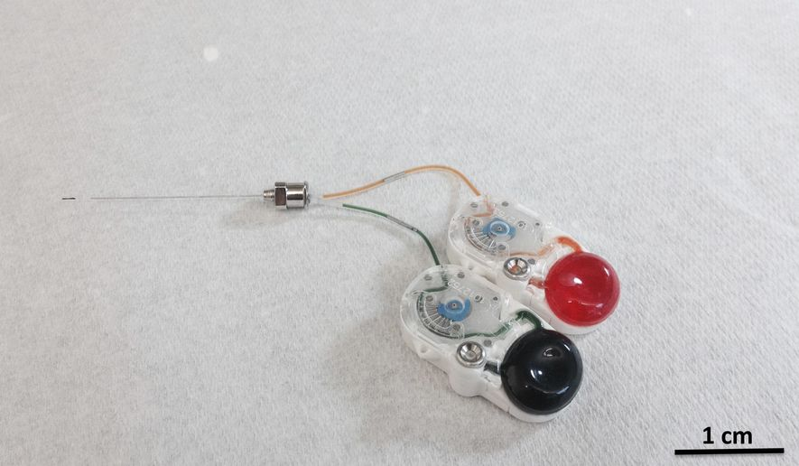 This undated image provided by researcher Canan Dagdeviren in January 2018 shows an implant that can precisely drip medications deep into the brain by remote control. The device could mark a new approach to treating brain diseases _ potentially reducing side effects by targeting only the hard-to-reach specific sections that need care. (Canan Dagdeviren/Massachusetts Institute of Technology via AP)