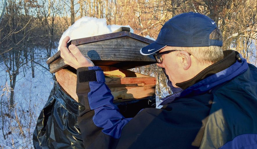 In a Jan.  18, 2018 photo, David Perry of Murraysville checks on a beehive in his front yard. Perry insulates about half of his dozen hives each winter, but largely adopts a live and let die approach. (Parick Varine/Pittsburgh Tribune-Review via AP)
