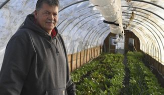 In a Jan. 17, 2018 photo, Bert Jones poses for a photo inside Living Hope Farm's greenhouse in Bristol, Wis. While other farmers wait out the winter,  Jones, the manager of the farm, is growing and harvesting despite the weather.  (Bill Siel/The Kenosha News via AP)