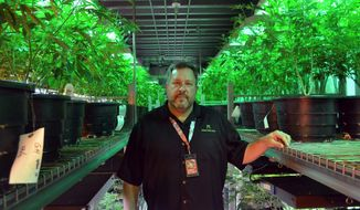 Andy Williams, founder and CEO of Medicine Man Denver, had six business accounts terminated from 2011 to 2015. Banks are reluctant to accept deposits from businesses that sell marijuana because the drug remains outlawed at the federal level. (Associated Press/File)