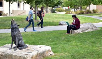 FILE - In this Sept. 21, 2015, file photo, a student works on her laptop on the campus of the University of New Mexico near a statue of the school's mascot, the Lobo, in Albuquerque. The University of New Mexico is among 50 flagship universities seeing a large wave of applications. The Albuquerque Journal reports that a recent analysis by The Washington Post looked at dramatic increases in applications experienced by state flagship institutions between 2006 and 2016 and ranked the University of New Mexico as seventh. (AP Photo/Russell Contreras, File)