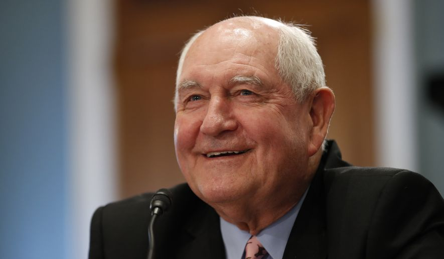 "Agriculture Secretary Sonny Perdue testifies on Capitol Hill in Washington, Wednesday, May 17, 2017, before a House Agriculture Committee hearing on ""State of the Rural Economy.""  (AP Photo/Alex Brandon)"