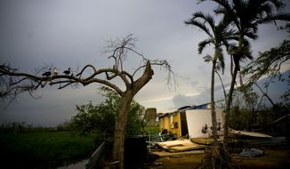 Ducks perch on the branch of a tree next to a home destroyed by Hurricane Maria in Toa Baja, Puerto Rico. Federal officials on Thursday, Feb. 1, 2018 blamed a lack of leadership, money and communication in Puerto Rico for setting back hurricane recovery efforts in the U.S. territory. (AP Photo/Ramon Espinosa, File)