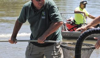 In this June 29, 2016 photo, now retired Mazonia-Braidwood Fish and Wildlife Area  Superintendent Mark Meents, hands off a dip net full of fish caught in Illinois Department of Natural Resources electro-fishing to be tagged as prize fish in the 33rd Annual Kakakekee River Fishing Derby in Kakakekee, Ill. Meents, retired Jan. 1, 2018 from the Illinois Department of Natural Resources after 39 years. (Robert Themer/The Daily Journal via AP)
