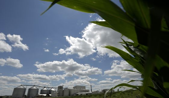 FILE - In this July 20, 2013 file photo, a plant that produces ethanol is next to a cornfield near Coon Rapids, Iowa.  For decades, a presidential candidate's chances in Iowa were wounded if not doomed unless he embraced federal support for ethanol, a now flourishing component to Iowa's economy in this corn-growing state. That immutable rule collapsed resoundingly early in the last campaign when five of the six top Republican candidates largely renounced a decades-old ethanol tax credit. (AP Photo/Charlie Riedel, File)