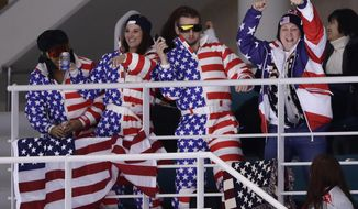 Fans cheer during the second period of the preliminary round of the women's hockey game between the United States and the team from Russia at the 2018 Winter Olympics in Gangneung, South Korea, Tuesday, Feb. 13, 2018. (AP Photo/Frank Franklin II)