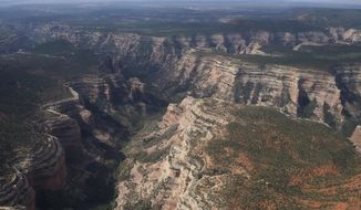 FILE - This May 8, 2017, file photo shows an aerial view of Arch Canyon within Bears Ears National Monument in Utah. The federal government says it doesn't have to release documents possibly outlining legal justifications for President Donald Trump to shrink national monuments because they're protected presidential communications. The U.S. Department of Justice on Friday, Feb. 9, 2018, made a second and far more detailed request asking a federal judge in Idaho to dismiss an environmental law firm's lawsuit seeking 12 documents withheld from a Freedom of Information Act request.(Francisco Kjolseth/The Salt Lake Tribune via AP, File)