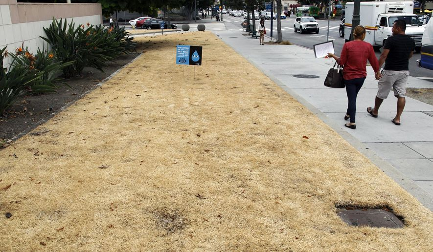 FILE - This Sept. 3, 2015, file photo shows a dried-out lawn at Los Angeles City Hall, with a sign explaining that irrigation has been shut off due to the ongoing drought. California water managers will vote Wednesday, Feb. 14, 2018, whether to reinstate some water restrictions and conservation campaigns and make them permanent, as a year with no almost no rain plunges Southern California back into drought and sends water use there climbing to levels above those of the state's historic 2013-2017 drought. (AP Photo/Nick Ut, File)