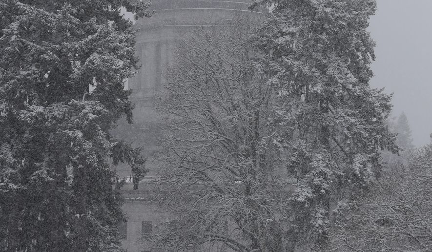 Snow falls and sticks to tree branches, Tuesday, Feb. 20, 2018, at the Capitol in Olympia, Wash. The National Weather Service issued a winter storm warning from the Portland, Ore., metro area north into Southwest Washington, with potential snow accumulations of 3 to 8 inches. (AP Photo/Ted S. Warren)