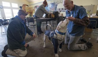 In this Tuesday, Feb. 20, 2018 photo, Street Dog Coalition veterinarian Dr. Jon Geller, right, gives 11-month-old american bullmastiff Odin a treat during a checkup while his owner Tera Jones looks on, on Tuesday, Feb. 20, 2018, at The Sister Mary Alice Murphy Center for Hope in Fort Collins, Colo. (Timothy Hurst/The Coloradoan via AP)