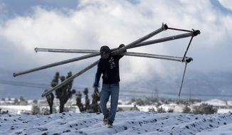 Cesar Torres carries irrigation pipe from a construction site after a snow storm left a few inches of snow in the Cajon Pass, and Oak Hills areas in Hesperia, Calif., Tuesday Feb. 27, 2018. Many of California's mountains are sporting new coats of snow, much of it down to low elevations, from the first of two cold weather systems predicted for the state this week. (James Quigg, Daily Press /The Daily Press via AP)