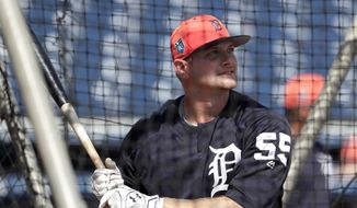 Detroit Tigers' John Hicks (55) hits during batting practice before a baseball spring exhibition game against the New York Yankees, Wednesday, Feb. 28, 2018, in Tampa, Fla. (AP Photo/Lynne Sladky) **FILE**