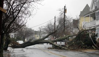 FILE - In this March 2, 2018 file photo, an uprooted tree blocks a residential street after taking down a power line in Swampscott, Mass.  Residents along the Northeast coast braced for more flooding during high tides Saturday even as the powerful storm that inundated roads, snapped trees and knocked out power to more than 2 million homes and businesses moved hundreds of miles out to sea.  (AP Photo/Elise Amendola)