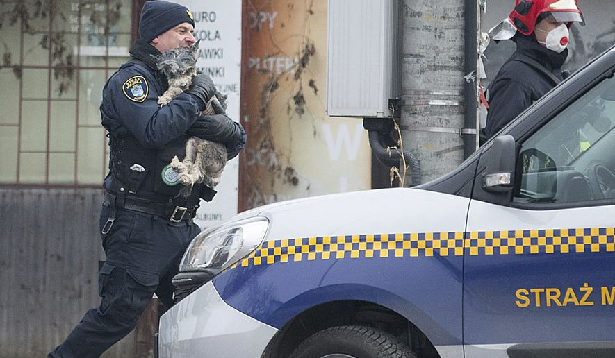 A city guard, left, and a rescuer walk with a little dog saved from the rubble of an apartment bloc that has collapsed killing several people in the western city of Poznan, Poland, Monday, March 5, 2018. Firefighters and rescuers with dogs have been searching in sub-freezing temperatures through the debris of the building in the western city of Poznan after it collapsed early Sunday.  (AP Photo/Str)
