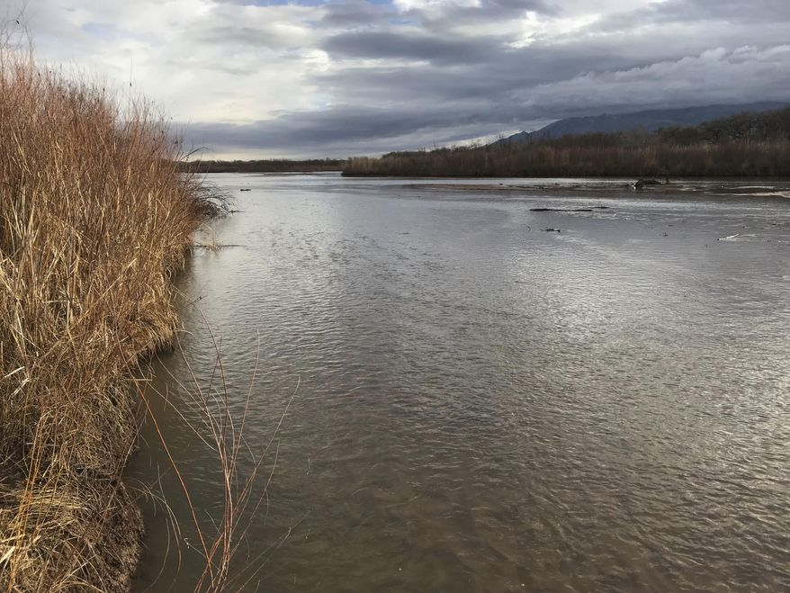 FILE - This Feb. 22, 2018 file photo The Rio Grande flows north of Albuquerque, N.M. The U.S. Supreme Court has ruled that the federal government can intervene in a water case pitting Texas against New Mexico and Colorado. Justice Neil Gorsuch writing for the court on Monday, March, 5, 2018, said the federal government must be allowed to meet its federal water commitments involving one of North America's longest rivers. Those obligations include an international agreement with Mexico and the decades-old Rio Grande Compact. (AP Photo/Susan Montoya Bryan,File)