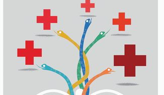 Illustration on health care insurance options by Linas Garsys/The Washington Times