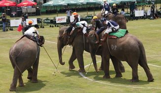 Polo players behind mahouts sit astride each elephants as they vie for the ball during the King's Cup Elephant Polo tournament in Bangkok, Thailand, Thursday, March 8, 2018. The annual elephant polo charity event raises funds for projects that better the lives of Thailand's wild and domesticated elephant population. (AP Photo/Sakchai Lalit)