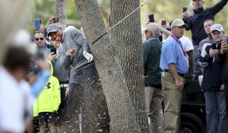 Tiger Woods uses an iron to escape an oak tree at the 16th hole while playing the Copperhead Course on Thursday, March 8, 2018, during the first round of the Valspar Championship at the Innisbrook Golf and Spa Resort in Palm Harbor, Fla. (Douglas R. Clifford/The Tampa Bay Times via AP)