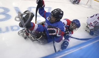 Czech Republic's Jiri Raul collide with South Korea's Choi Kwang Hyouk during a preliminary Ice Hockey match of the 2018 Winter Paralympics held in Guangneung, South Korea, Sunday, March 11, 2018. (AP Photo/Ng Han Guan)