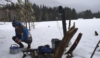 In this photo taken March 9, 2018, Alaska Department of Fish and Game Wildlife Biologist Tory Rhoads checks on a bat monitoring station at Fish Creek in Juneau, Alaska. Bat researchers across the country fear the spread of the deadly white-nose syndrome (WNS), a fungal infection which has decimated bat populations in eastern states and has recently been found in Washington state. WNS still hasn't found its way to Alaska, but if and when it does, scientists at the Alaska Department of Fish and Game want to be prepared. To do so, they say they'll need to help of citizen scientists. (Kevin Gullufsen/Juneau Empire via AP)