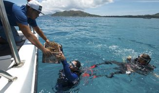 FILE - In this Tuesday, Feb. 20, 2018 file photo, a box of nursery-grown coral is handed to a diver off the coast of Praslin, where coral is being reintroduced, in the Seychelles. Beneath the crystal-clear waters of the Indian Ocean island nation of the Seychelles, a fight is growing to save the coral reefs that shelter a range of creatures and act as a protective barrier for coastlines but the reefs are also one of the first victims of rising ocean temperatures. (Tate Drucker/The Nature Conservancy via AP, File)