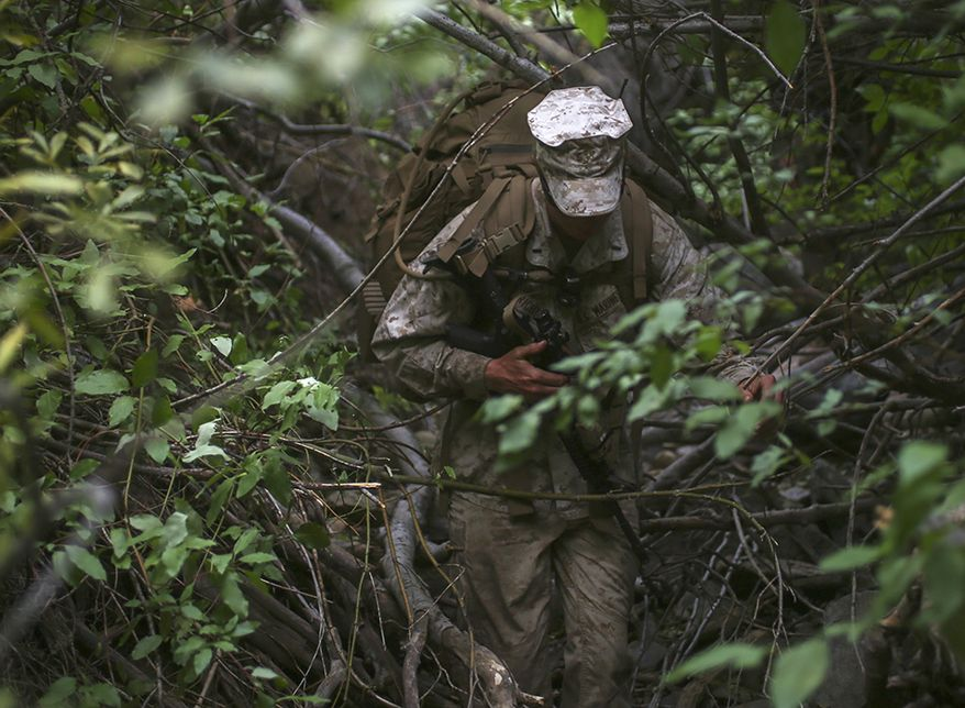 1st Lt. Alexander Richmond, a logistics officer assigned to Truck Company, Headquarters Battalion, 1st Marine Division, makes his way through a dense forest during phase two of Mountain Warfare Training Exercise 5-15 aboard Marine Corps Mountain Warfare Training Center Bridgeport, Calif., Sept. 12, 2015. The training covered maneuvering throughout mountainous terrain features by rope climbing and rappelling as well as surviving in the rugged environment. (U.S. Marine Corps photo by Cpl. Will Perkins/Released)