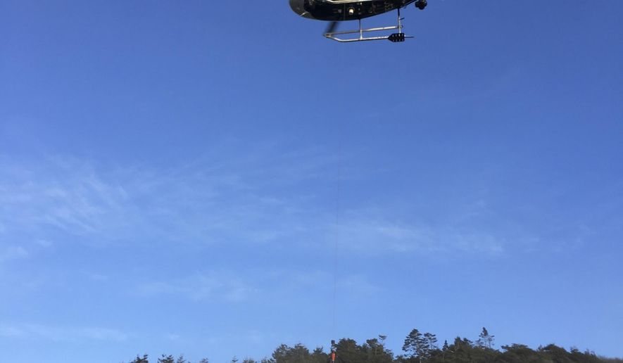 This Tuesday, March 27, 2018, photo provided by the California Highway Patrol shows a helicopter hovering over the scene where a vehicle plunged off a cliff in Northern California near Mendocino, Calif. The California Highway Patrol identified the adult victims Wednesday as Jennifer Hart and Sarah Hart, who died along with a few other children. (California Highway Patrol via AP)