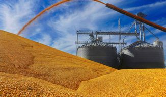 FILE - In this Wednesday, Sept. 23, 2015 file, photo, central Illinois farmers deposit harvested corn on the ground outside a full grain elevator in Virginia, Ill. Corn has been dethroned as the king of crops as farmers report they intend to plant more soybeans than corn for the first time in 35 years. The U.S. Department of Agriculture says in its annual prospective planting report released Thursday, March 29, 2018, that farmers intend to plant 89 million acres in soybeans and 88 million acres in corn. (AP Photo/Seth Perlman, File)