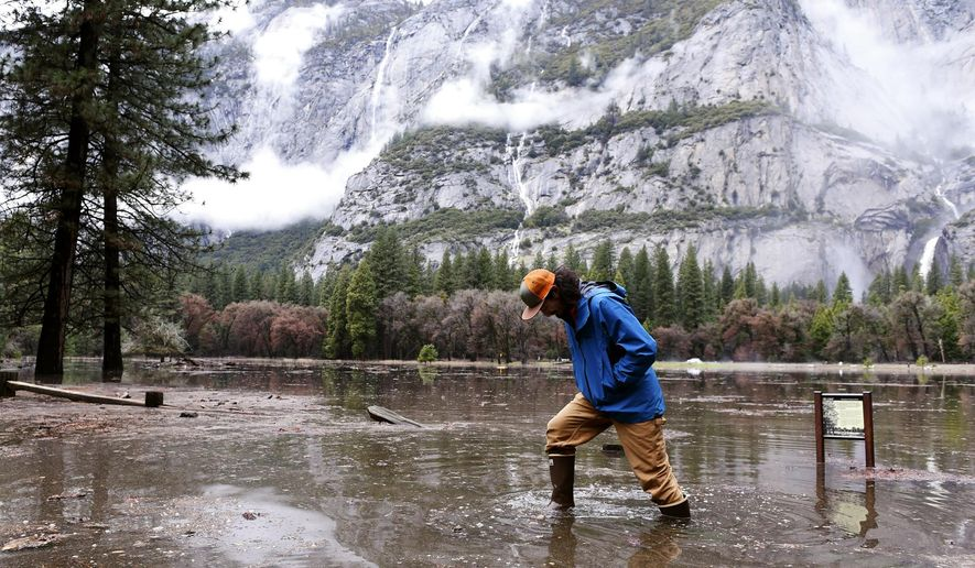"""Kevin Kimo Laughlin, a maintenance worker for Aramark, wades back to dry ground as the Merced River rises due to rain in Yosemite National Park's Yosemite Valley on Saturday, April 7, 2018. Northern California was drenched by a powerful """"Pineapple Express"""" storm, but no major problems were reported after the heaviest rain from the """"atmospheric river"""" of subtropical moisture moved through late Friday. (Eric Paul Zamora/The Fresno Bee via AP)"""