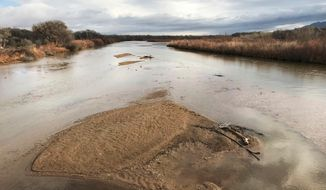 FILE - In this Feb. 22, 2018 file photo, sandbars fill the Rio Grande north of Albuquerque, N.M. Drought is stiffening its hold across the American Southwest as extreme conditions spread from Oklahoma to Utah. The federal drought map released Thursday, April 12, 2018, shows dry conditions especially intensified across northern New Mexico and expanded in Arizona. (AP Photo/Susan Montoya Bryan, File)