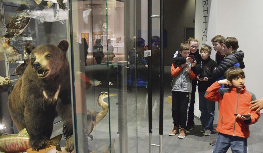 In this Friday, April 6, 2018 photo, a group of middle and high school students looks at the U.S. Forest Service's new Agents of Discovery app at the Father Andrew P. Kashevaroff State Library, Archives and Museum in Juneau, Alaska. The Agents of Discovery app is free to download and there are no in-app purchases. Agents of Discovery also has a mission for the Mendenhall Glacier, which premiered last year. That app, USFS personnel say, should be downloaded before visitors make the trip to the glacier as the visitor's center there doesn't have fast enough WiFi to download the app. (Kevin Gullufsen/The Juneau Empire via AP)