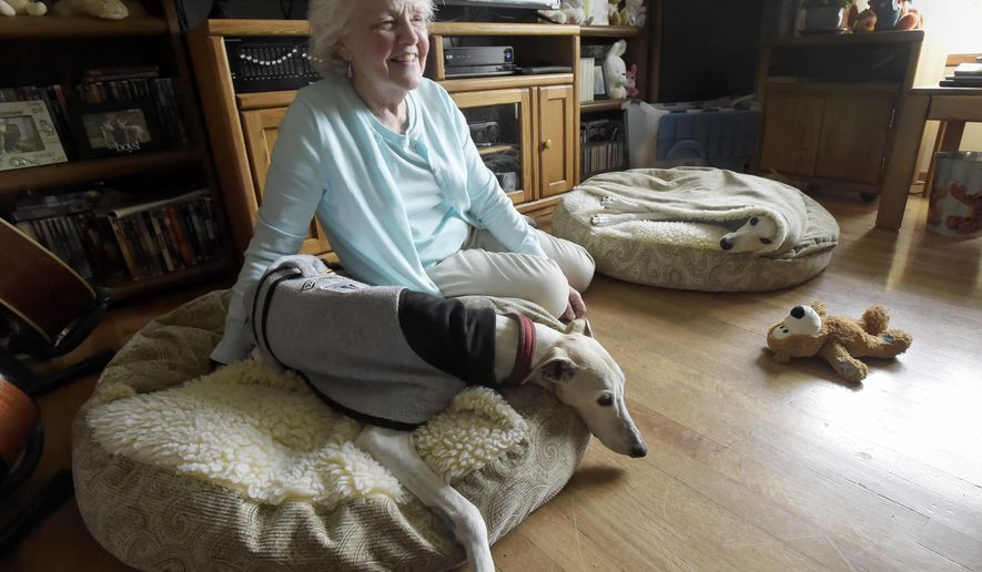 In this April 2018 photo, Jacqueline Barrington, a retired teacher sits with her dogs, Dustee and Jackson, in Corvallis, Ore. Barrington, who does a lot of the READ dog events at schools and the libraries, has a whippet she thinks is the longest serving reading dog ever. Dustee is older now and is expected to retire at the end of the year. Jackson on the pillow to the right will be taking over as a READ dog in January. (Andy Cripe /The Corvallis Gazette-Times via AP)