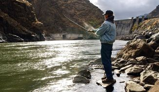 FILE - In this Nov. 16, 2003, file photo, fisherman Larry McBrom works along the Snake River shoreline below Hells Canyon Dam in southwestern Idaho. Idaho officials have approved an agreement allowing a utility company's $216.5 million in relicensing expenses for a three-dam hydroelectric project on the Snake River on the Idaho-Oregon border. (Darin Oswald/The Idaho Statesman via AP, File)