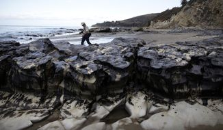 FILE - In this May 21, 2015, file photo, David Ledig, a national monument manager from the Bureau of Land Management, walks past rocks covered in oil at Refugio State Beach, north of Goleta, Calif. A Texas company that owns an oil pipeline that spilled 140,000 gallons of crude along the Santa Barbara coast faces a criminal trial three years after the disaster. (AP Photo/Jae Hong, File)