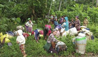 In this photo provided by Labram Hkun Awng, Kachin civilians displaced by fighting between the Myanmar military and Kachin guerrillas take shelter in a jungle close to Tanai, northern Kachin state, Myanmar Thursday, April 19, 2018. Community leaders from the Christian ethnic Kachin community have called for urgent medical attention for about 2,000 civilians, including pregnant women and the elderly, trapped in the jungle where they fled to escape clashes between the Myanmar's army and the Kachin guerrillas in the country's north. (Labram Hkun Awng via AP Photo)