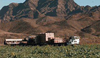 FILE--This Dec. 17, 1997, file photo, lettuce is harvested at a farm in Wellton, Ariz., east of Yuma. The Centers for Disease Control is expanding a warning about contaminated lettuce from Arizona that has now sickened dozens of people in several states. (AP Photo/Jeff Robbins, file)
