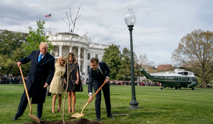 In this April 23, 2018, file photo, first lady Melania Trump, second from right, and Brigitte Macron, second from left, watch as President Donald Trump and French President Emmanuel Macron participate in a tree-planting ceremony on the South Lawn of the White House in Washington. The sapling, a gift from Macron on the occasion of his state visit, is gone from the lawn. A pale patch of grass was left in its place. (AP Photo/Andrew Harnik, File)