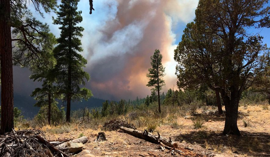 This April 29, 2018, photo provided by the Arizona Department of Forestry and Fire Management shows a wildfire burning in north-central Arizona. The wildfire has grown and firefighters expect that winds and dry conditions may cause it to increase in size. (Arizona Department of Forestry and Fire Management via AP)